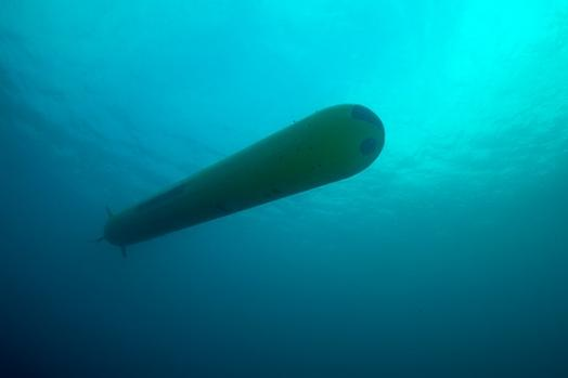 ECA-Group-AUV-A18-M-underwater-4.jpg