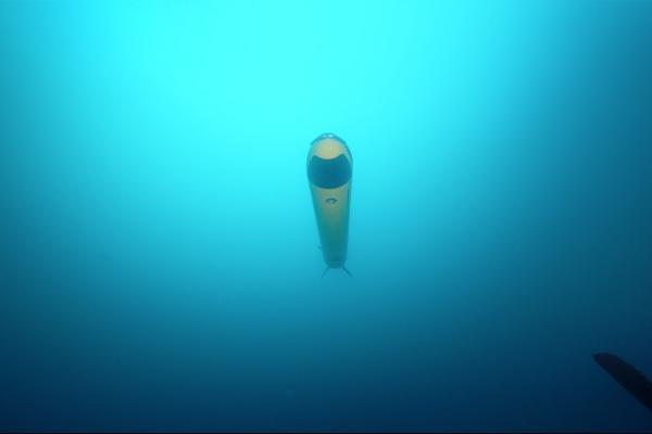 ECA-Group-AUV-A18-M-underwater-7.jpg