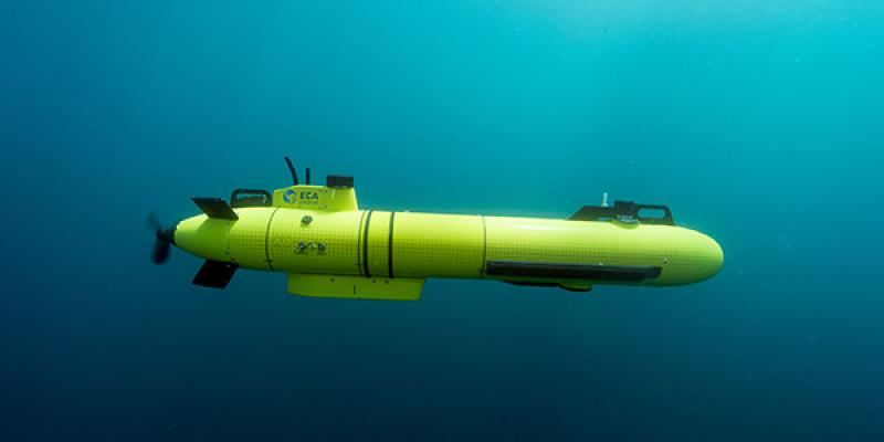 Autonomous Underwater Vehicle (AUVs) Solutions