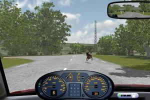 Simulation Training Systems for Safe Driving in Risky Situations