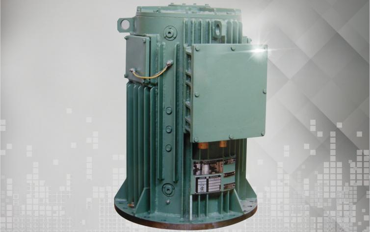 DC Motors 1 to 300 KW for Maritime Applications